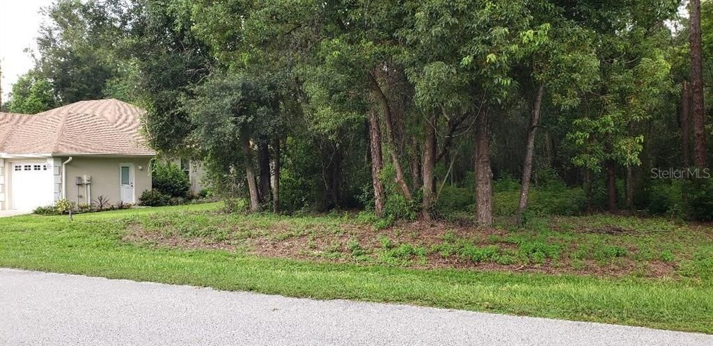 36811 Summers Ridge Dr, Dade City, FL 33525 - Lot/Land - MLS# T3190211 - 6  Photos | Trulia