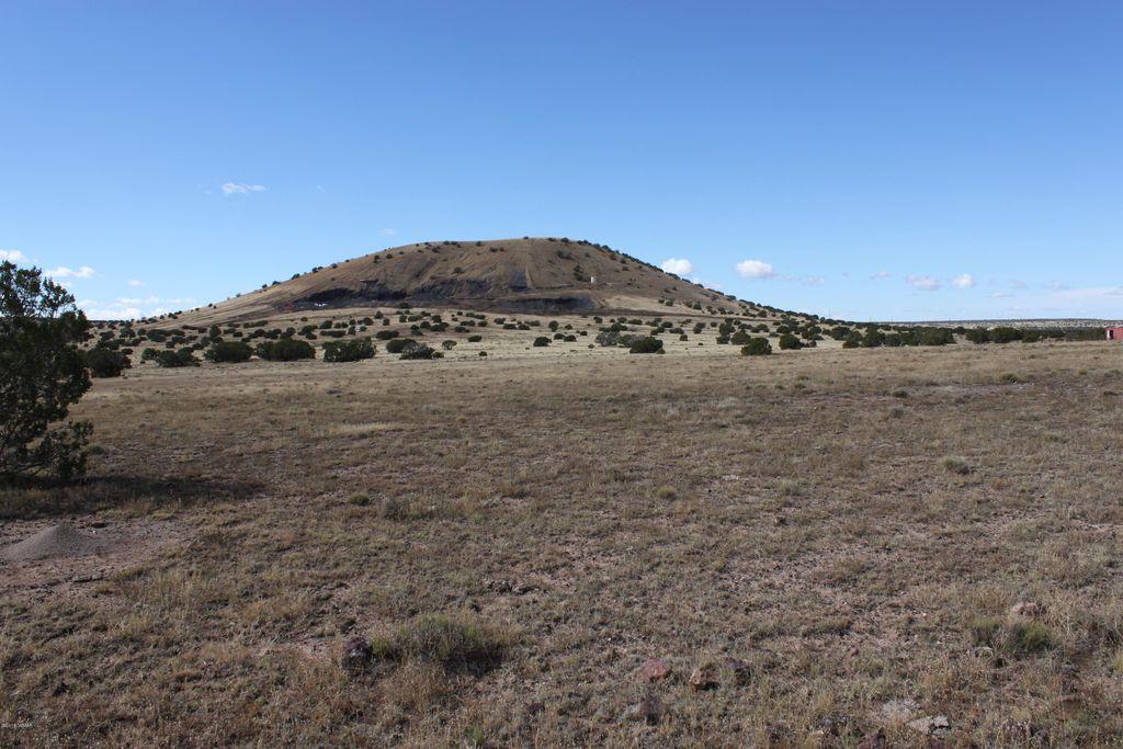 3 Juniper Ln Concho Valley AZ 85924