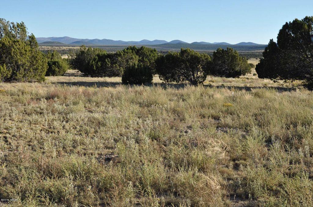 185 Highway 61 D Concho Valley AZ 85924